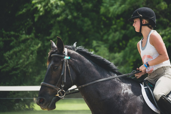Equestrian Camp - English Rider-1