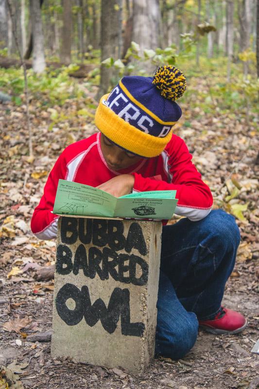 Bubba-Bard-Owl
