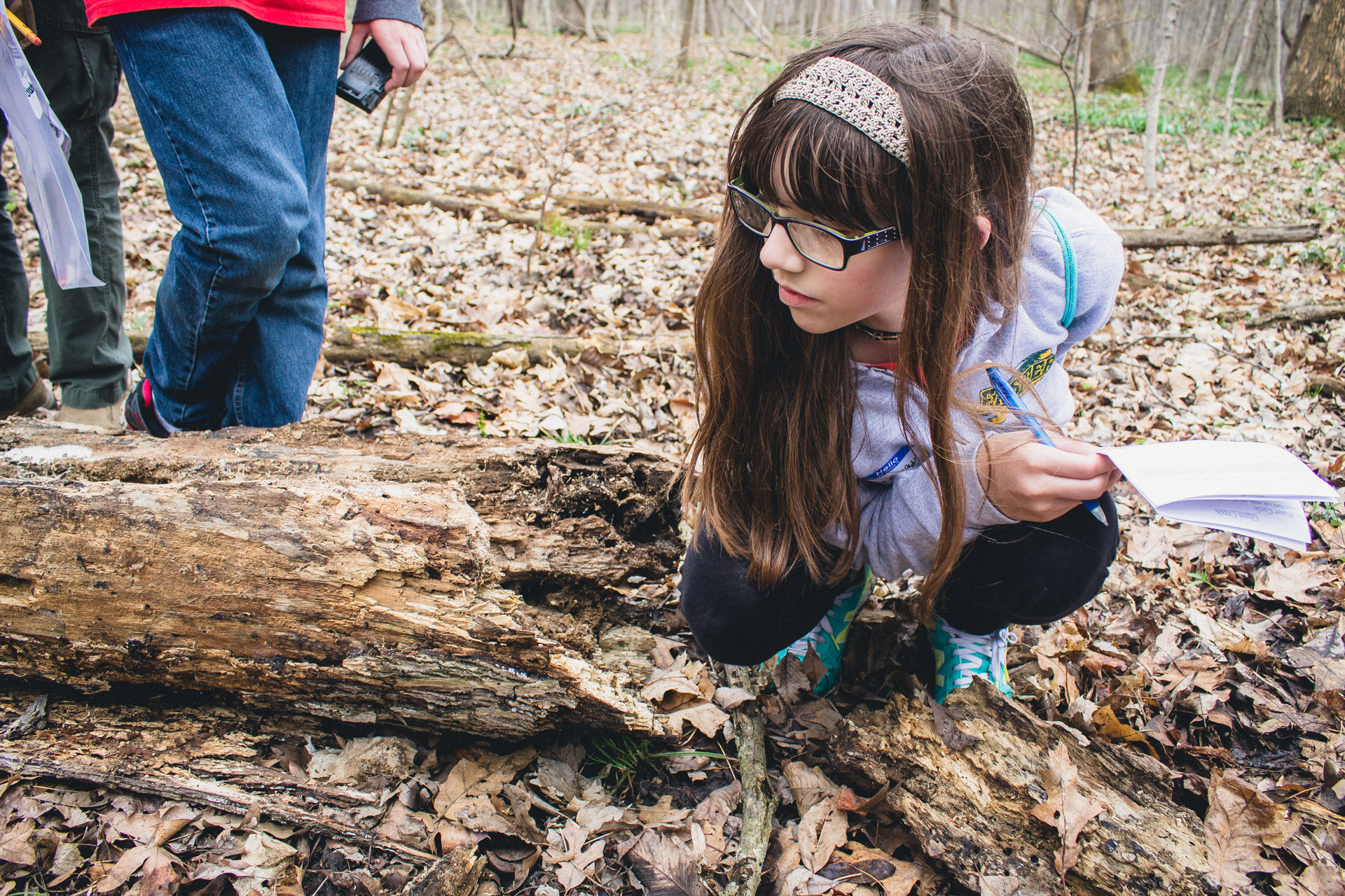 Examining-a-Log---Outdoor-Education