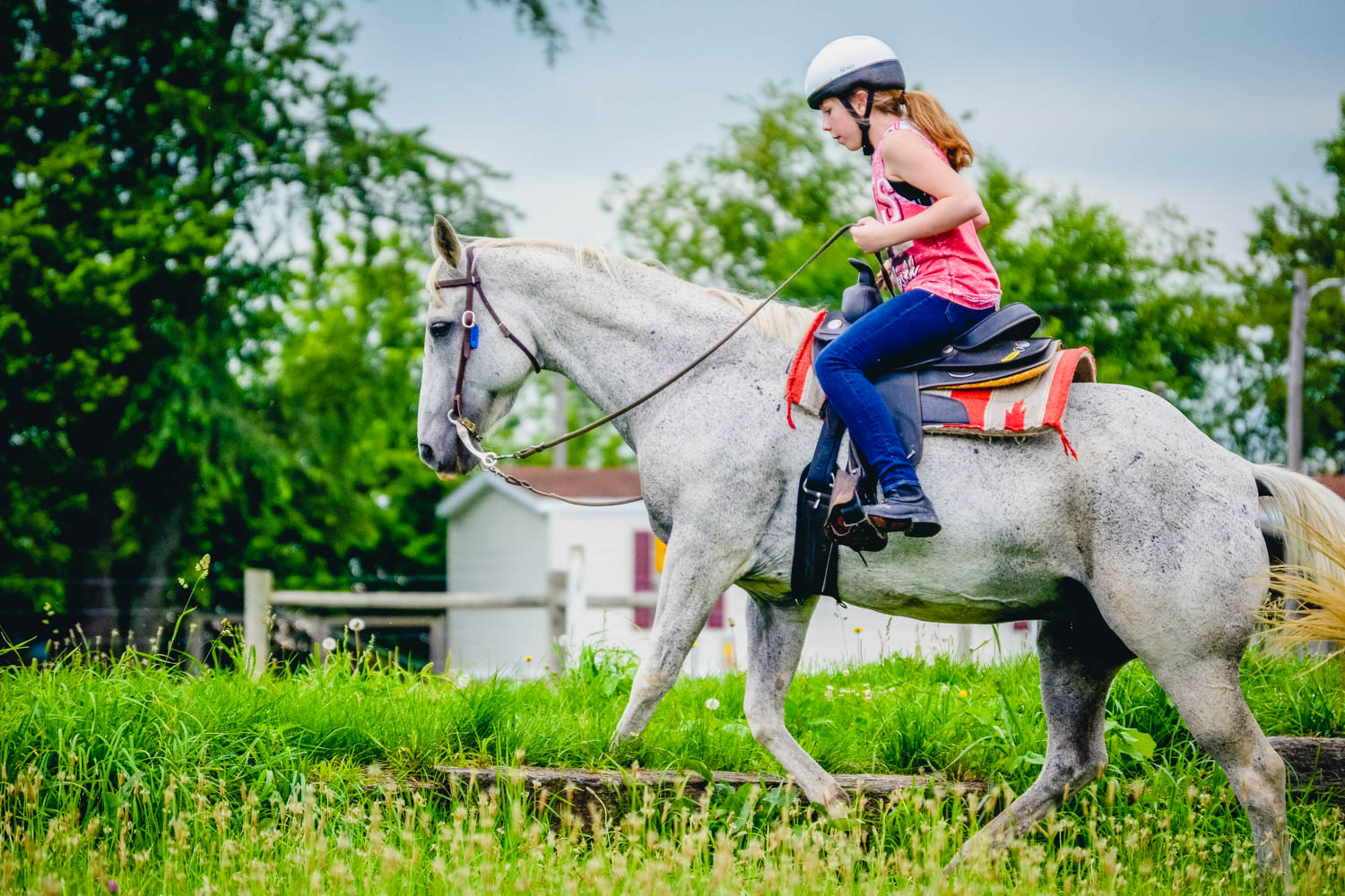 10 Things You Might Not Know About Equestrian Camp